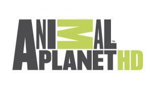 Animal Planet HD Online